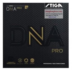Stiga-DNA-H