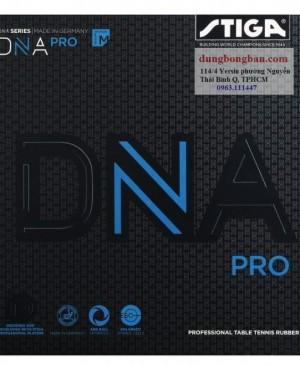 Stiga-DNA-M
