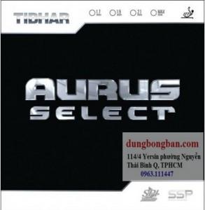 Tibhar-Aurus-Select