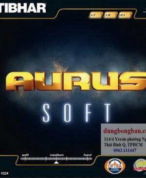 Tibhar-Aurus-Soft