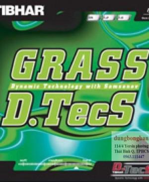 Tibhar-Grass-D-tecS