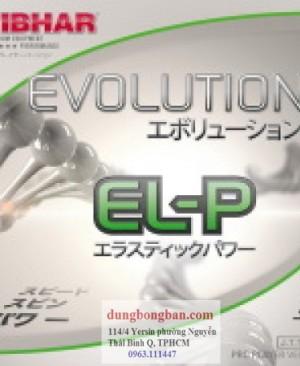 Tibhar-evolution-ELP