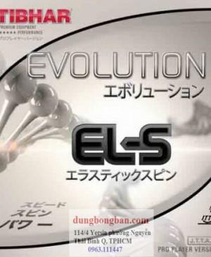 Tibhar-evolution-ELS