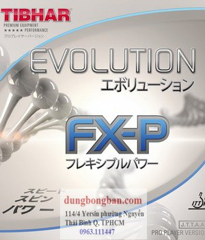 Tibhar-evolution-FXP
